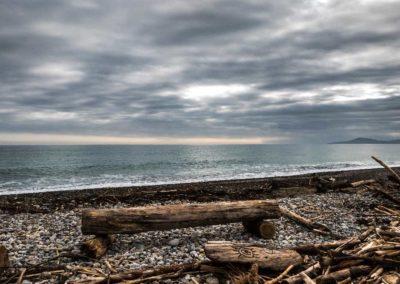 tempête st cyprien plage mer bois flottés